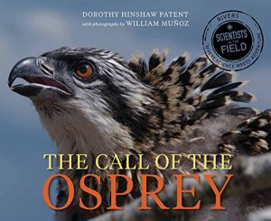 Call of the Osprey (Scientists in the Field Series) by Dorothy Hinshaw Patent | Featured Book of the Day | wearewordnerds.com