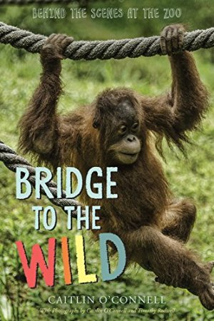 Bridge to the Wild: Behind the Scenes at the Zoo by Caitlin O'Connell | Featured Book of the Day | wearewordnerds.com