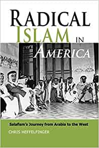 Image result for book cover radical islam in america