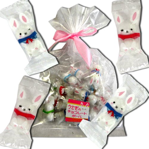 うさぎ チョコ ( お菓子 おやつ チョコレート ギフト プチギフト プレゼント 贈りもの お土産 京都 ウサギ 兎 )