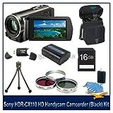 Sony HDRCX110