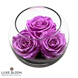 "Luxe Bloom Orchid Preserved Roses | Lasts 60 days | Gorgeous Spring Flowers | 3 Orchid (purple) roses & greens in a 4"" glass bubble 