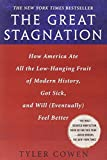 The Great Stagnation: How America Ate All the Low-Hanging Fruit of Modern History, Got Sick, and Will(Eventually) Feel Better