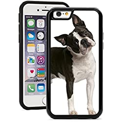 Apple iPhone 6 Plus 6s Plus Shockproof Impact Hard Soft Case Cover Cute Confused Boston Terrier Dog (Black)