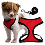 Soft Dog Harness for Puppies and Toy Breeds - Small - Includes a 4ft Leash
