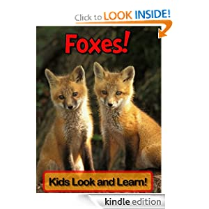 Foxes! Learn About Foxes and Enjoy Colorful Pictures - Look and Learn! (50+ Photos of Foxes)