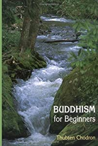"Cover of ""Buddhism for Beginners"""