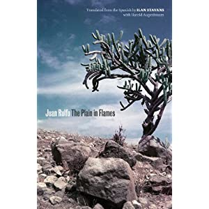 The Plain in Flames (Joe R. and Teresa Lozana Long Series in Latin American and Latino Art and Culture)