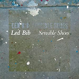 """Cover of """"Sensible Shoes"""""""