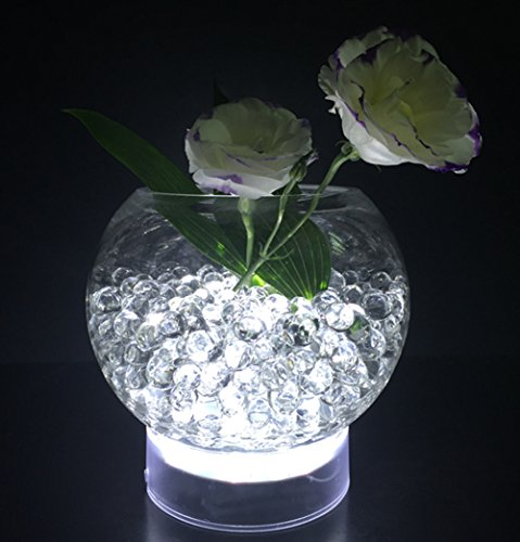 Led Light Bases Vases