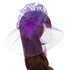 Binmer(TM)Wedding Fascinator Veil Feather Hard Yarn Headband Brides Hair (Purple)
