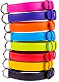 "Leather Dog Collar Puppy Small Medium Large Soft Padded Pink Black Purple Orange Red (Purple, Neck fit 11"" - 14"")"