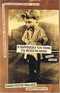 "Cover of ""A Supposedly Fun Thing I'll Nev..."