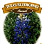Ferry-Morse 1164 Texas Annual Flower Seeds, Bluebonnet (1.75 Gram Packet)