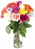Bouquet of Long Stemmed Rainbow Roses (Dozen) - With Vase