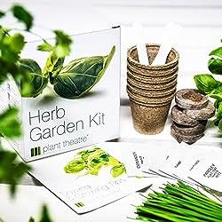 Plant Theatre P035A - Kit de germinación hierbas aromáticas