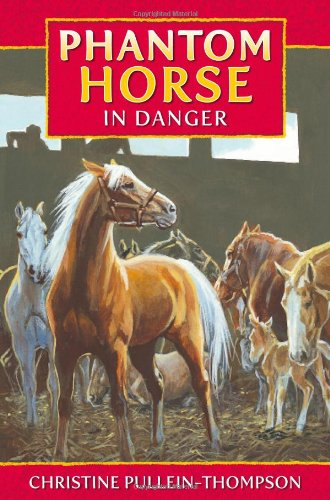 Book Number Phantom 7 Stallion