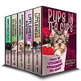 "Pups in Tea Cups: Tales of ""Littleness"" overcoming BIG odds"