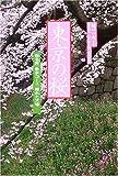 花紀行 東京の桜―桜名所、散歩コース、隠れた穴場… (花紀行)