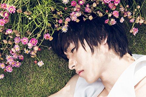【amazon限定特典付き】山﨑賢人 日めくりカレンダー