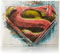 Dynomighty Men's Billfold Wallet Superman, Multi, One Size