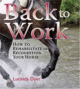 "Cover of ""Back to Work: How to Rehabilita..."