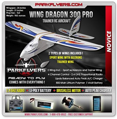 Wing-Dragon-300-Includes-Two-Wing-Types