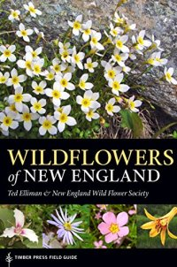 Wildflowers of New England: Timber Press Field Guide (Timber Press Field Guides)