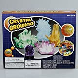 Growing Crystal Kit