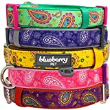 "Blueberry Pet Spring Collars 5/8"" S Paisley Flower Print Inspired Ultimate Red-Violet Adjustable Basic Neoprene Padded Dog Collar for Small Dogs"