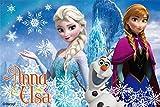 レジャーシート S アナと雪の女王 VS1