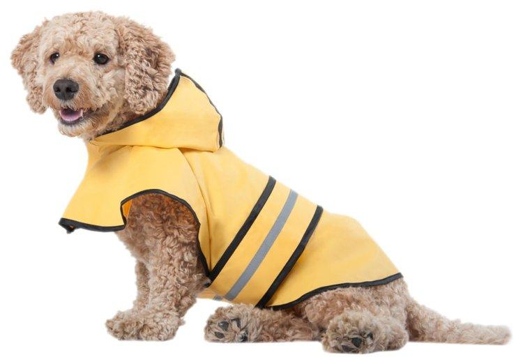 Yellow Dog Rain Slicker