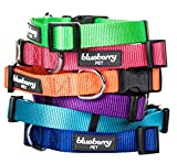 Blueberry Pet 3/8-Inch Classic Solid Basic Polyester Nylon Puppy Dog Collar, X-Small, Royal Blue