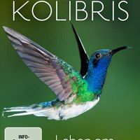 Kolibris : Leben am Limit / Regie: Paul Reddish