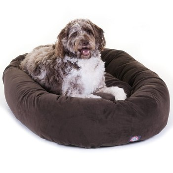 Chocolate-Suede-Majestic-Pet-Products