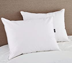 Puredown White Goose Feather and Down Pillow