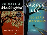 To Kill a Mockingbird (2 Book Series)