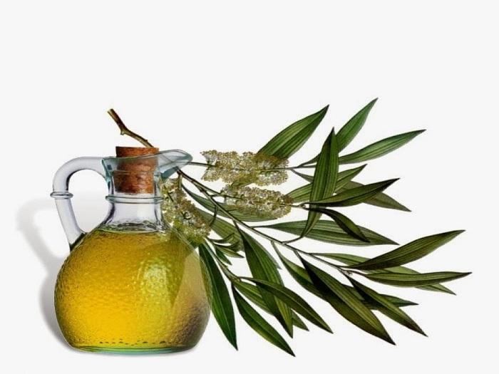 Tea Tree Oil for scalp eczema