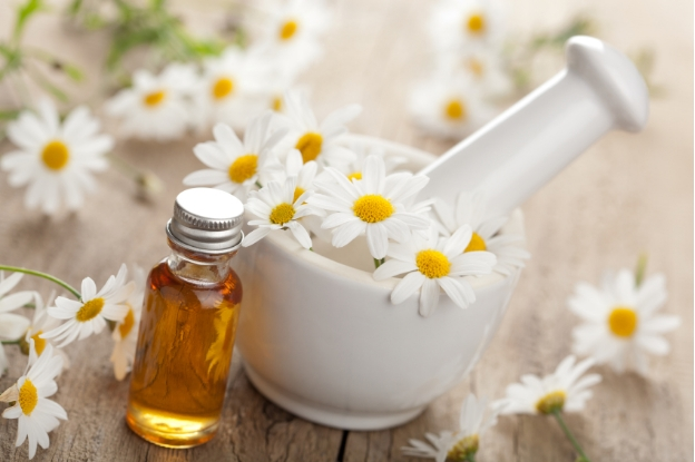 Chamomile Essential Oils For Eczema