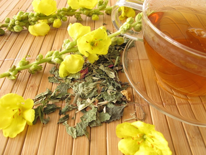 Mullein herbal tea for asthma