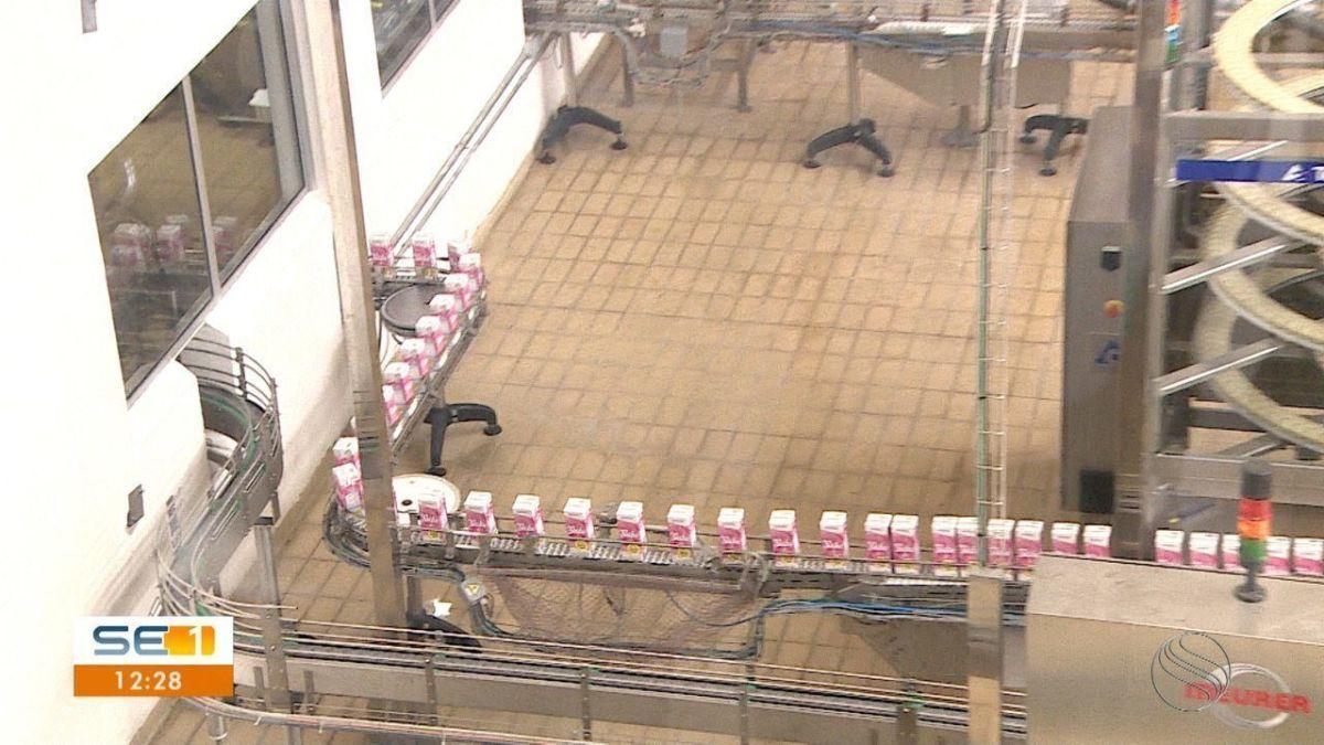 Fábrica de laticínios de Sergipe paralisa produção de leite