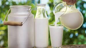 União de esforços por lácteos de qualidade