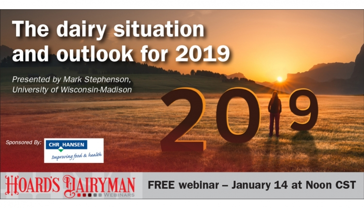 The dairy situation and outlook for 2019
