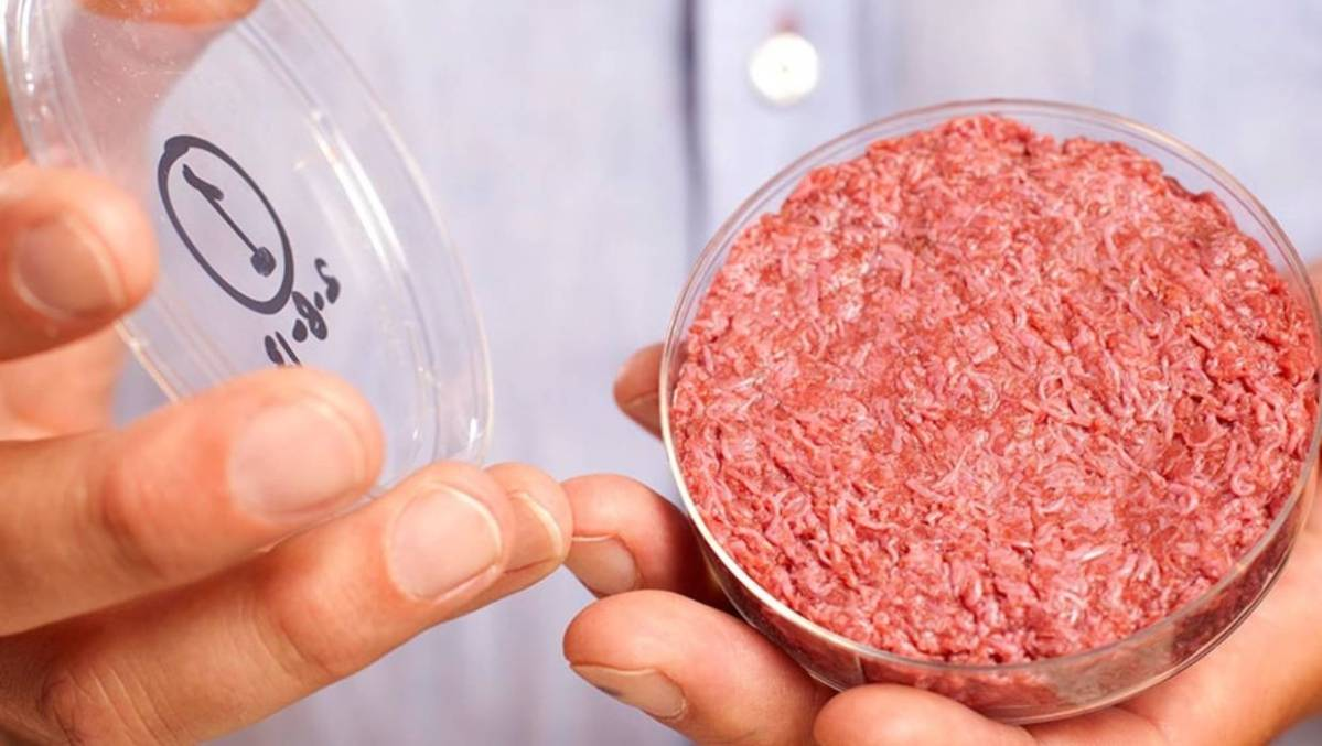 Fonterra is investing in artificial meat, but would you eat it?