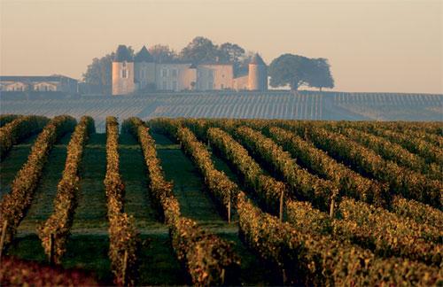 Chateau d'Yquem viinaaed Sauternes's I Allikas: Decanter