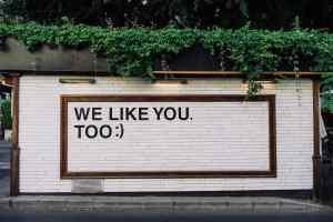 CESA - we like you