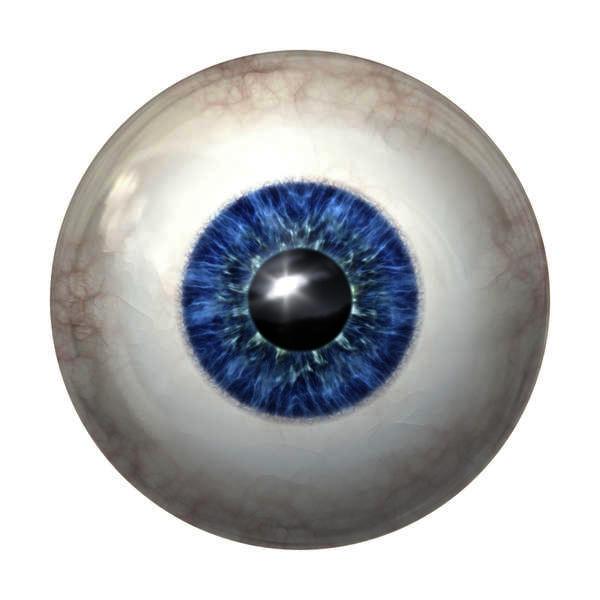 Eye Floaters Age 40