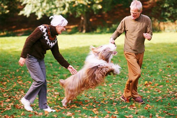 Las mascotas mejoran la salud de las personas