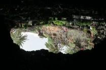 Jameos del lagua