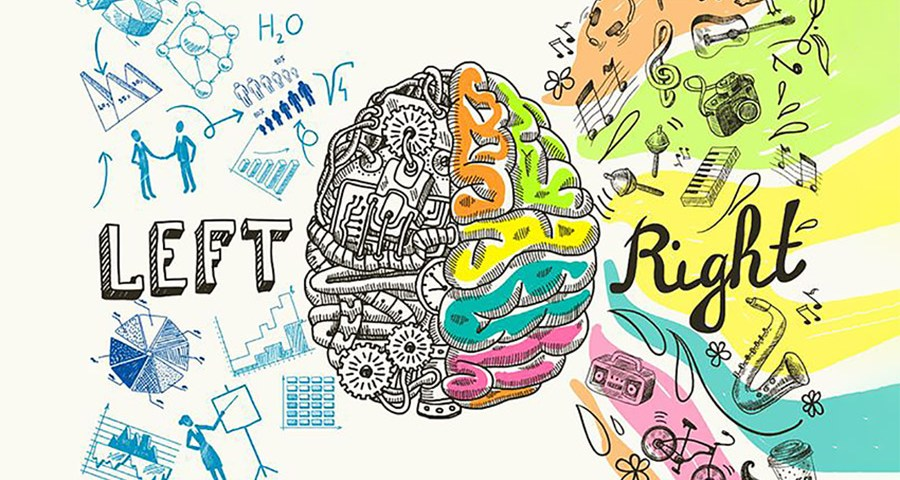 Left versus Right Brain